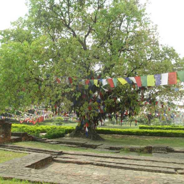 ville de bouddha