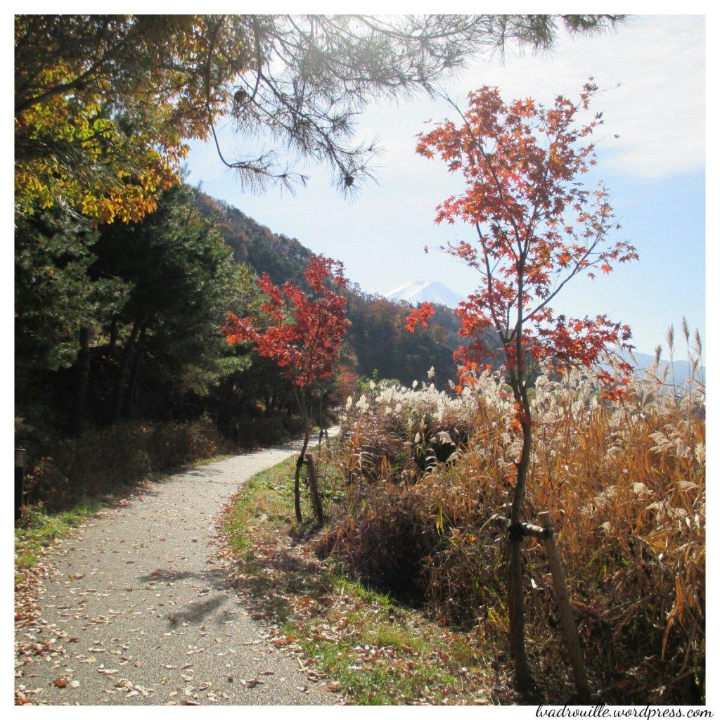 promenade au japon